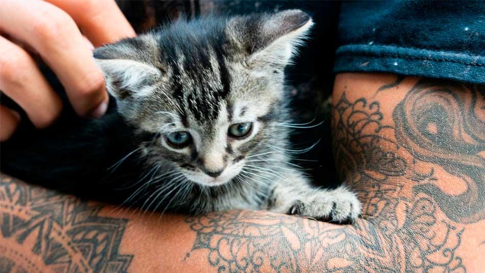 Can Nurses Have Tattoos or Piercings?