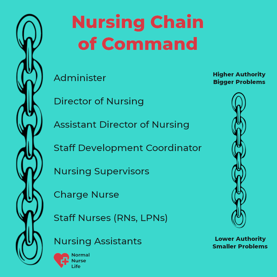 Nursing chain of command chart